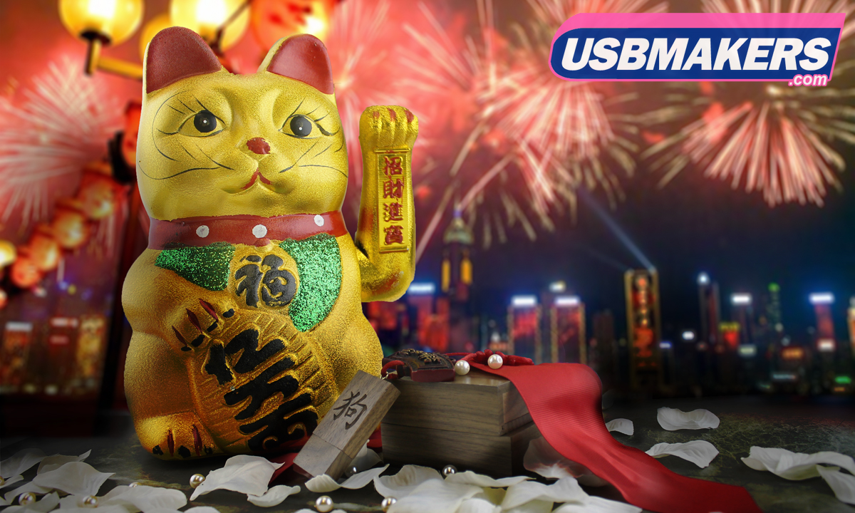 Chinese New Year 2018 at USB Makers