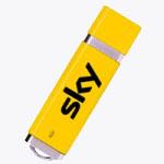 Dixie Style USB Drive