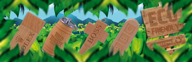 Wooden Eco Friendly USB Memory Sticks