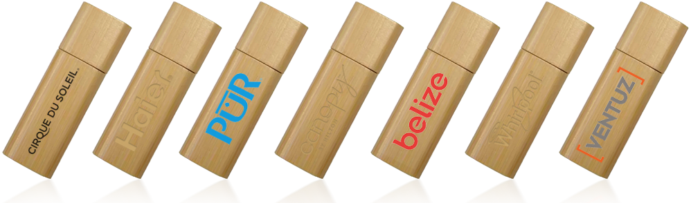 Wooden Stick USB Drive
