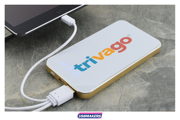 Branded Georgia Power Bank
